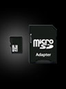 8GB Micro SD Card w/ Adapter
