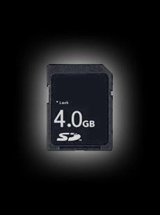 4GB SD Card (Black)